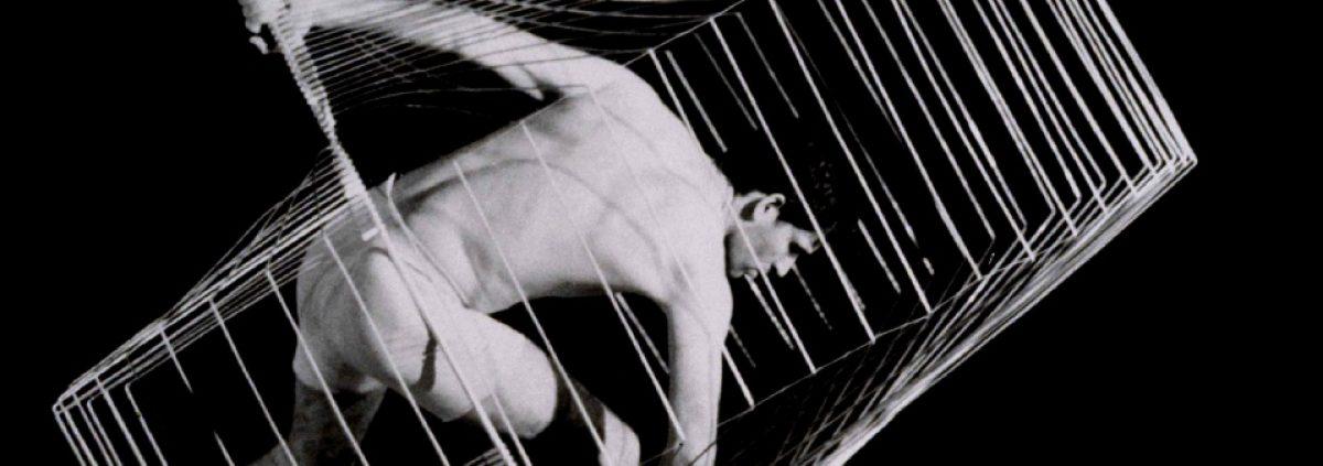 banner-bodysculpture10